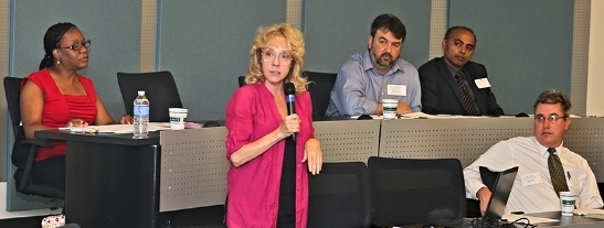A woman lecturing a group of professionals.
